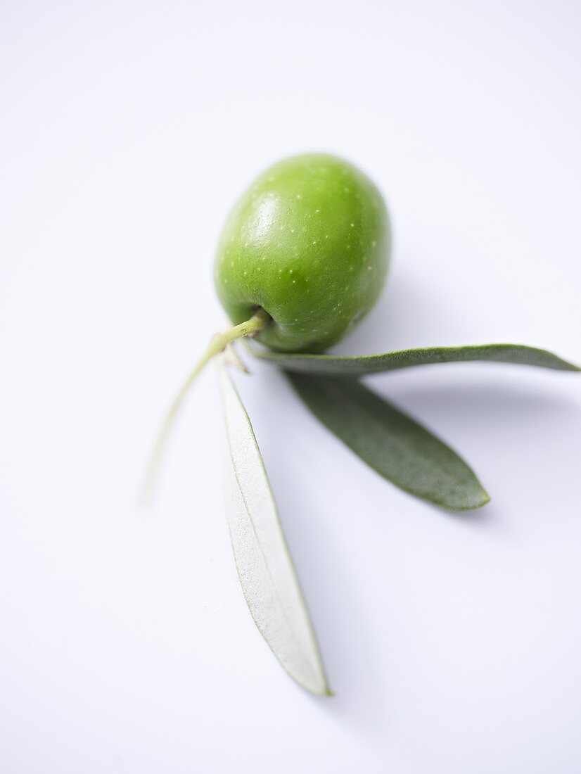 Green olive with leaves