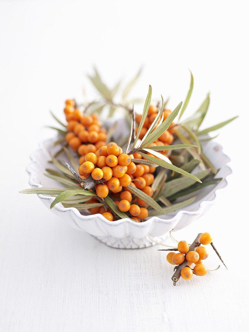 Sea buckthorn berries in and beside dish