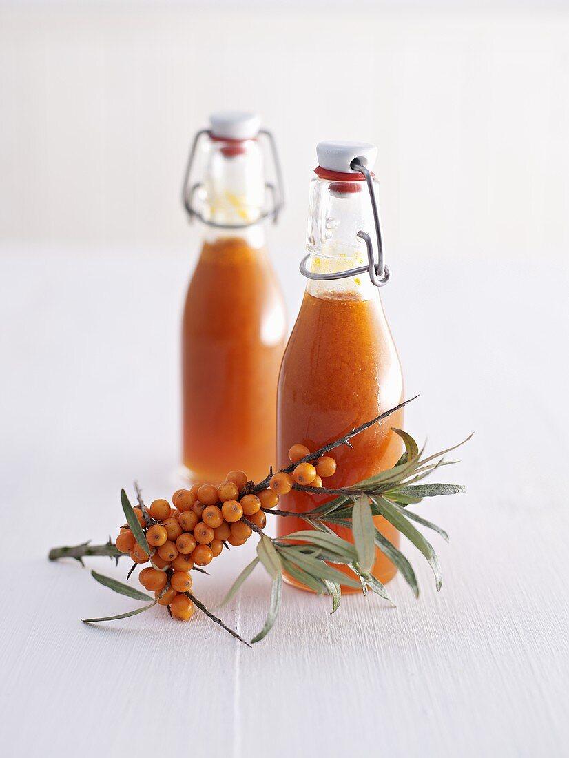 Two bottles of sea buckthorn juice and sea buckthorn berries