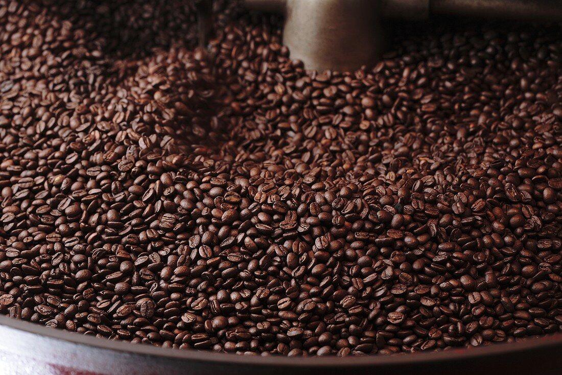 Coffee beans in roasting machine