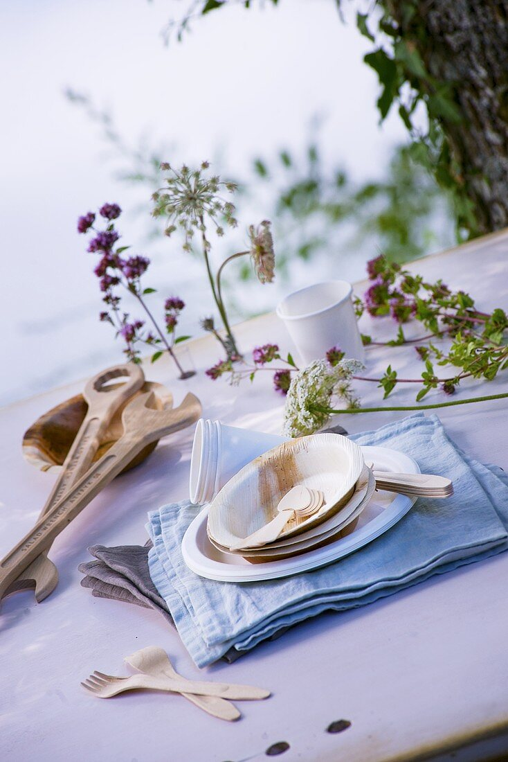 Wooden and paper crockery, cutlery and tools