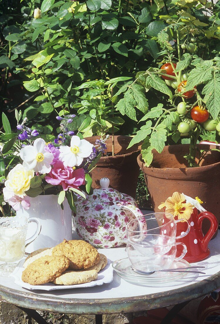 Tea things, biscuits, flowers & tomato plants on garden table