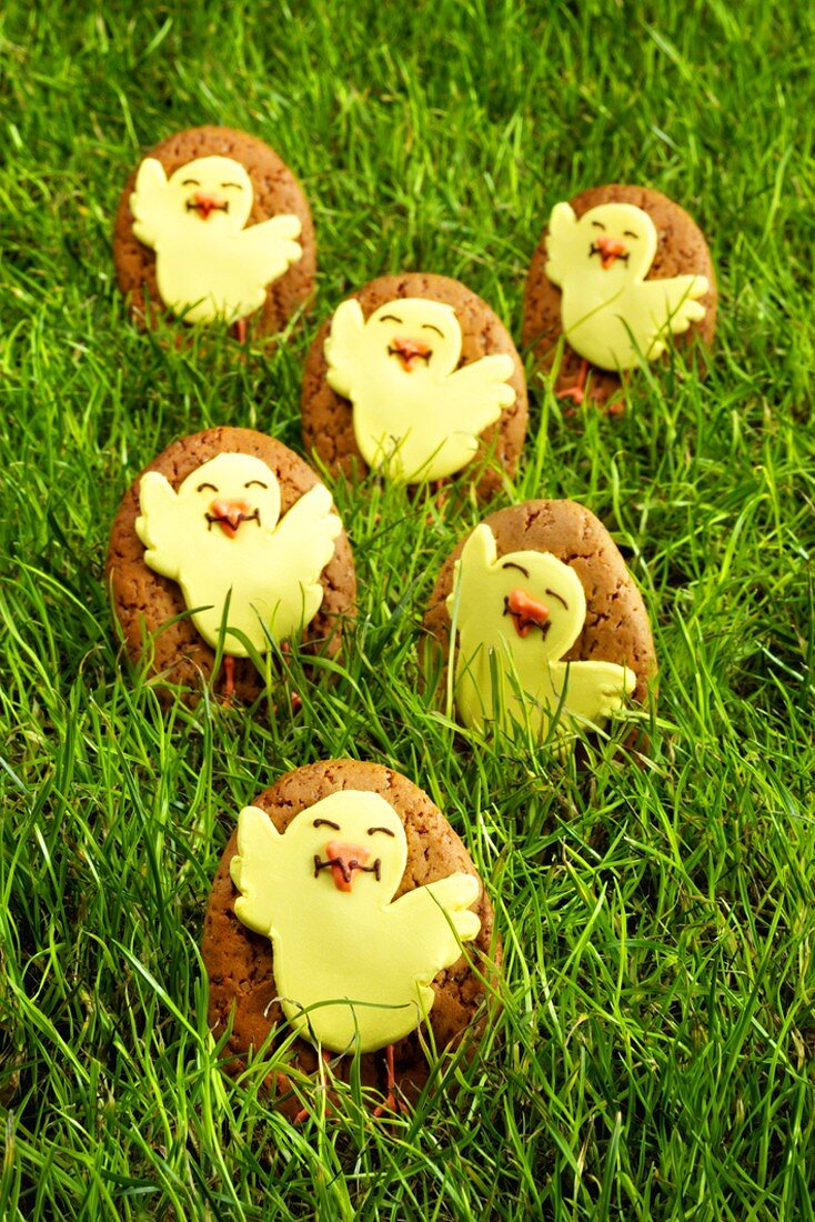 Egg-shaped Easter biscuits with chick decoration in grass