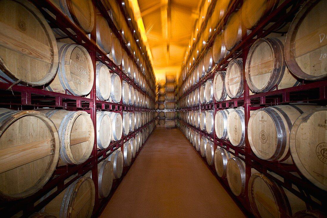 Rioja barrels, Spain