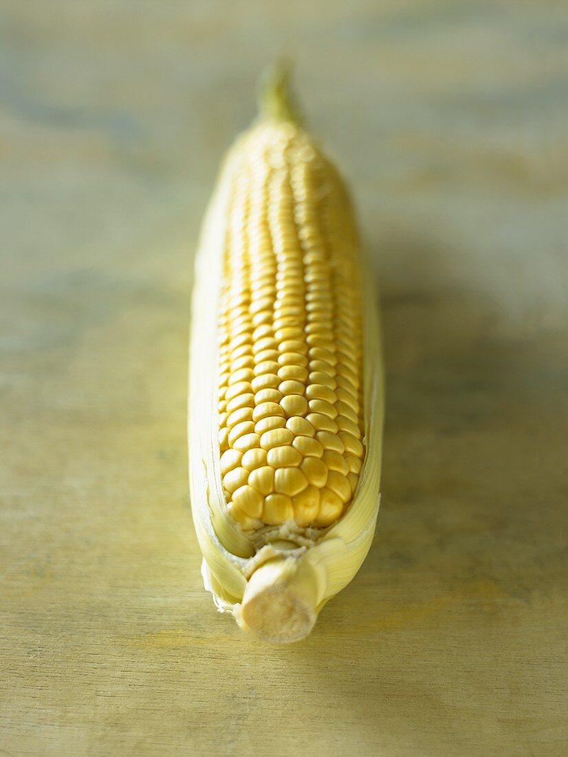A cob of corn