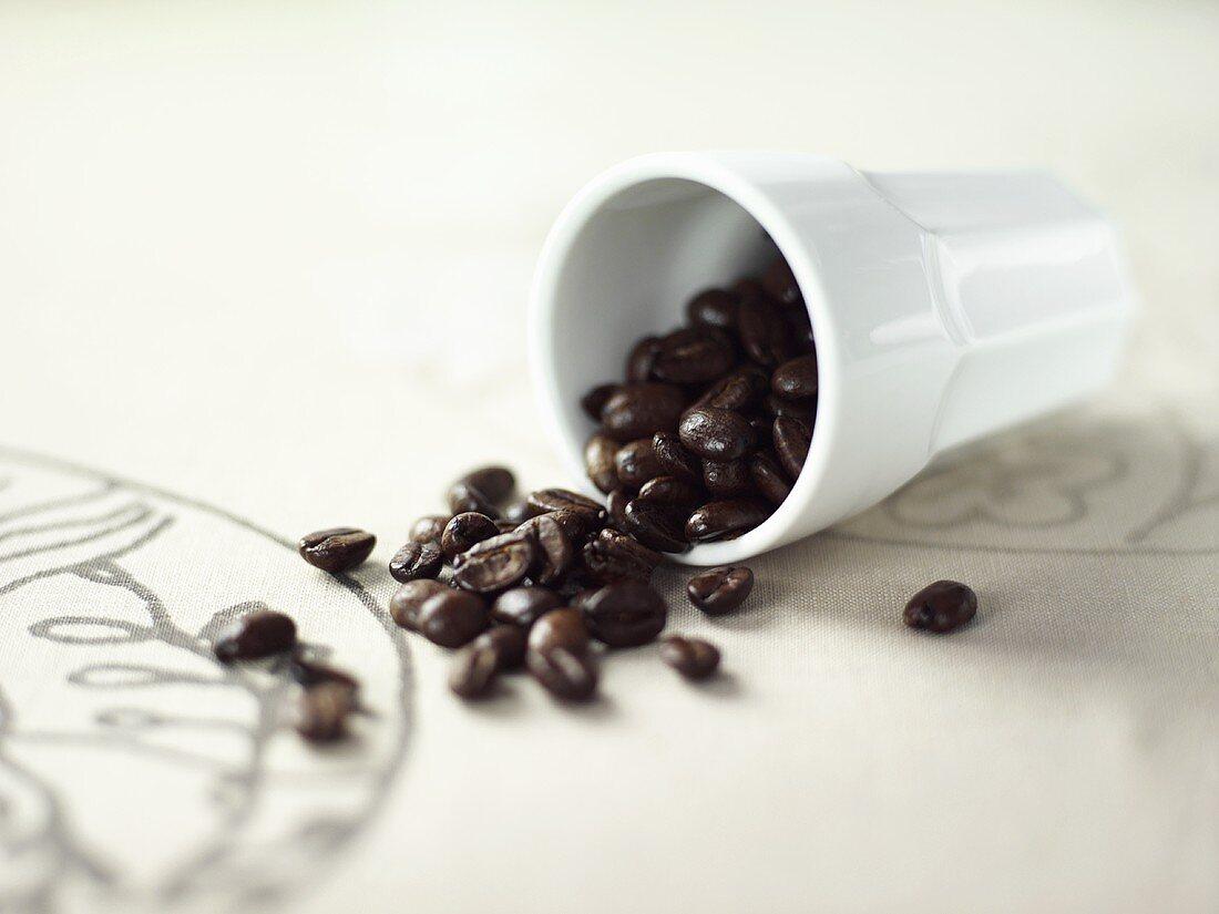 An upset beaker of coffee beans