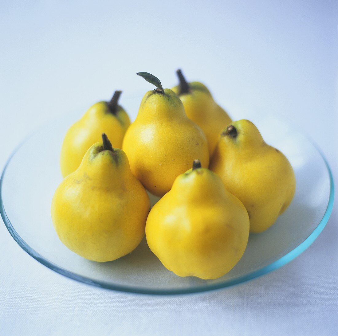 Pear-shaped quinces on a glass plate