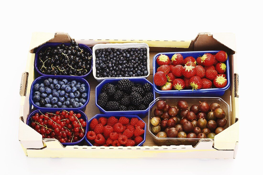 Various types of berries in plastic containers in cardboard box