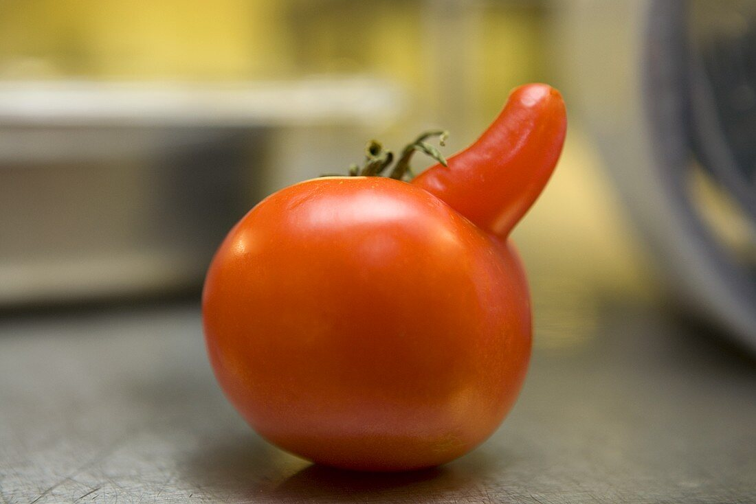 Tomato with nose