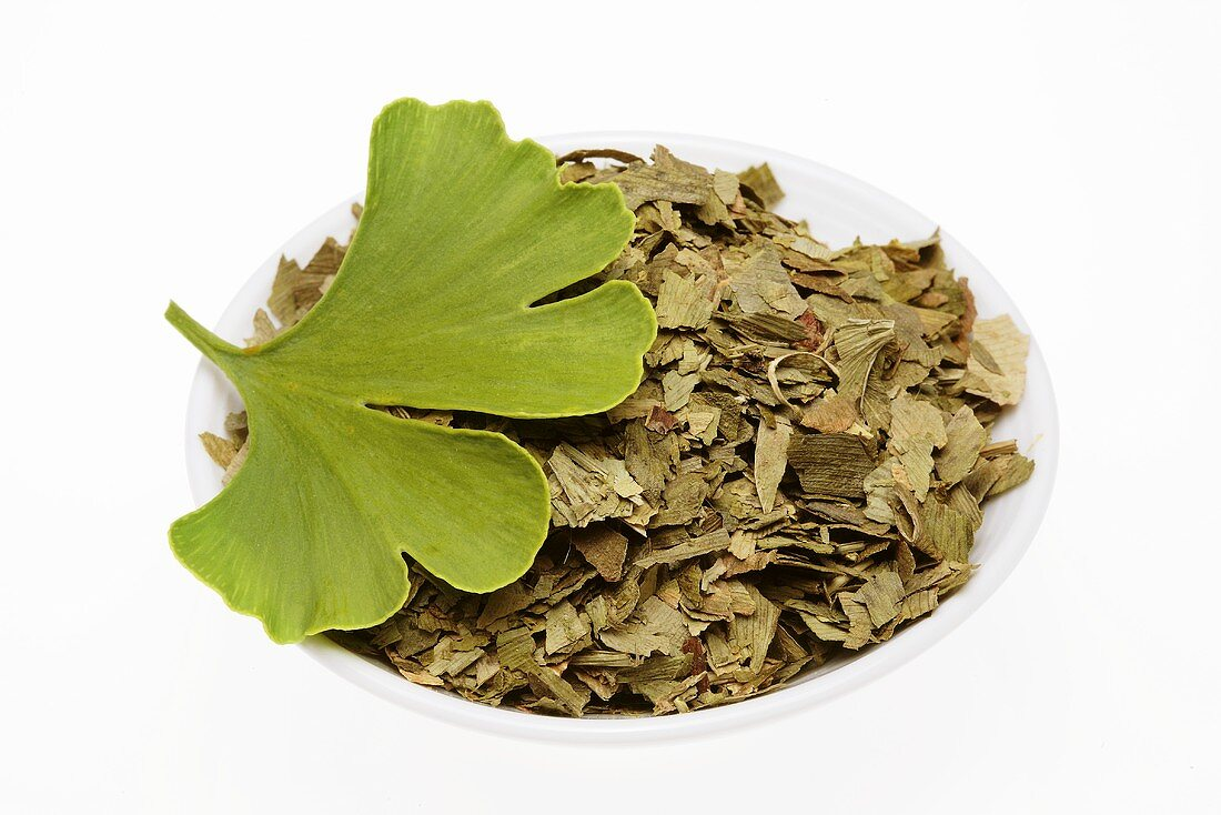 Ginkgo leaves, fresh and dried