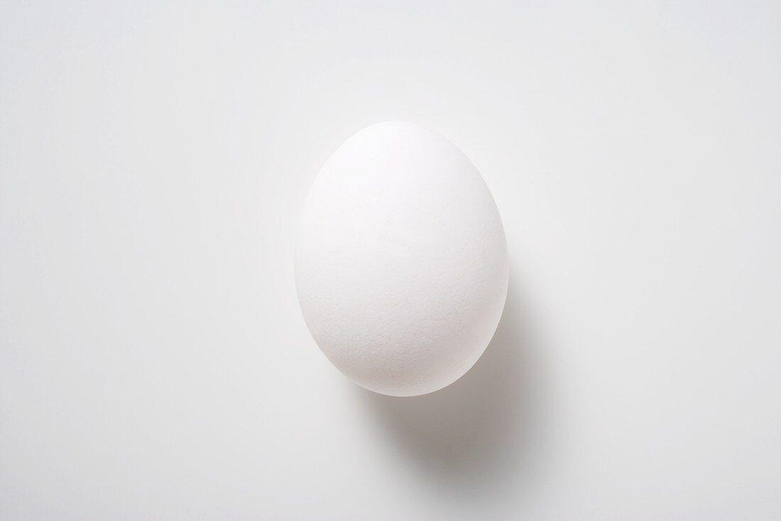 A white hen's egg
