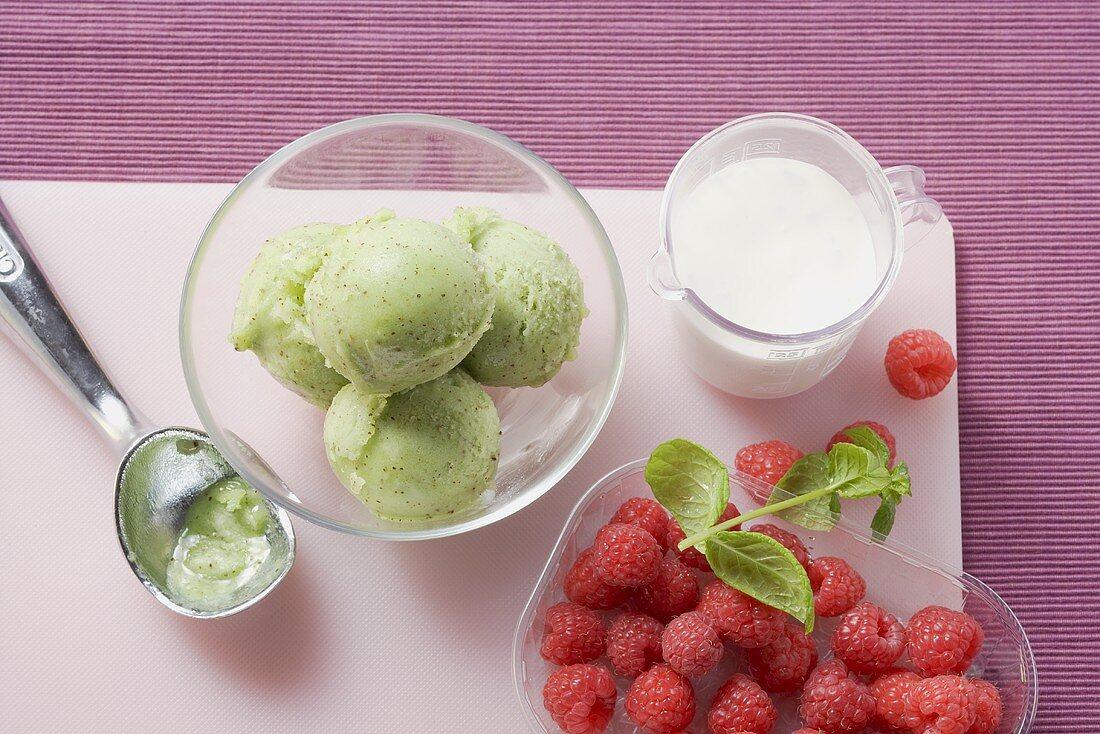 Kiwi fruit ice cream and fresh raspberries