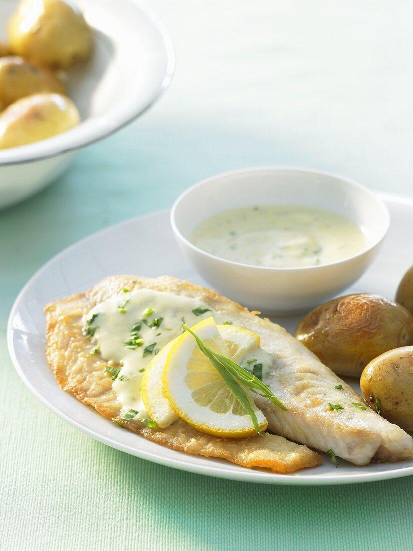 Tilapia fillets with tarragon & mustard sauce and potatoes