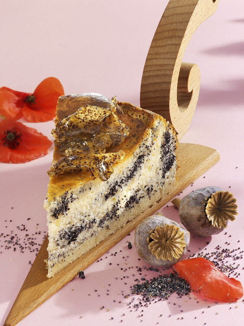 A piece of mascarpone and quark cake with poppy seeds