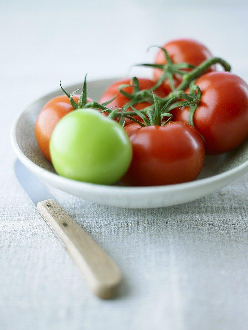 Five ripe and one unripe tomato