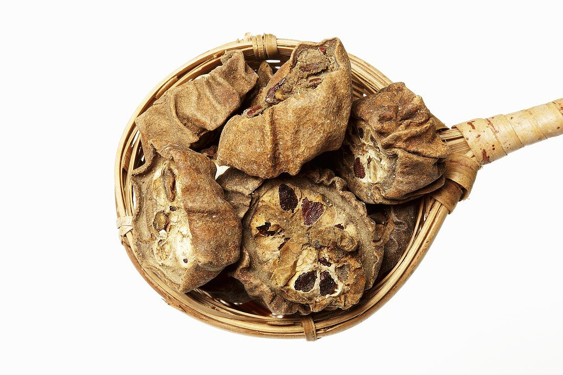 Dried fruits of the five-leaf akebia in tea strainer