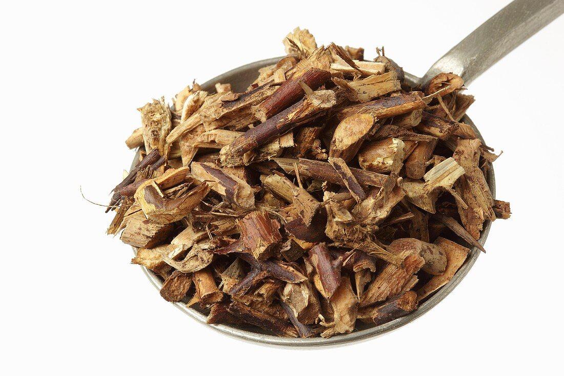 Dornen-Kraut der chin. Gleditschie (Gleditsia sinensis)