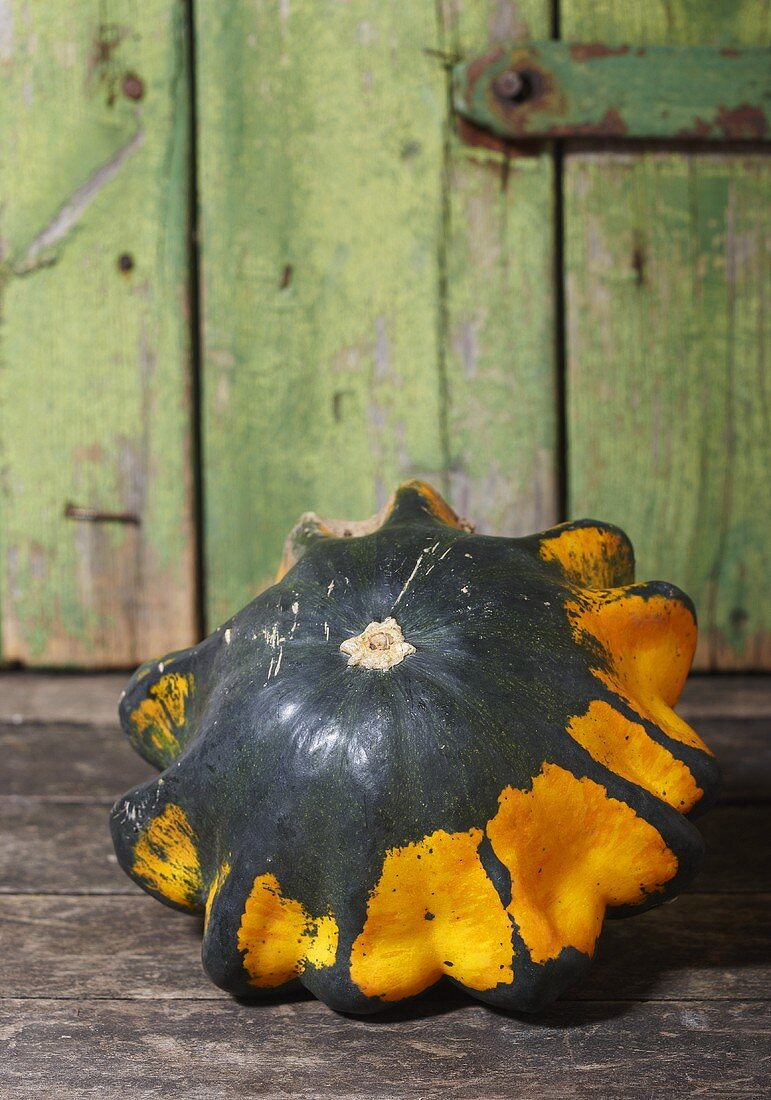 Green and yellow squash (variety: Flying Saucer)