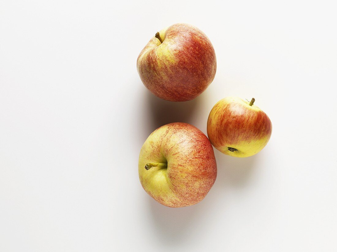 Three cooking apples