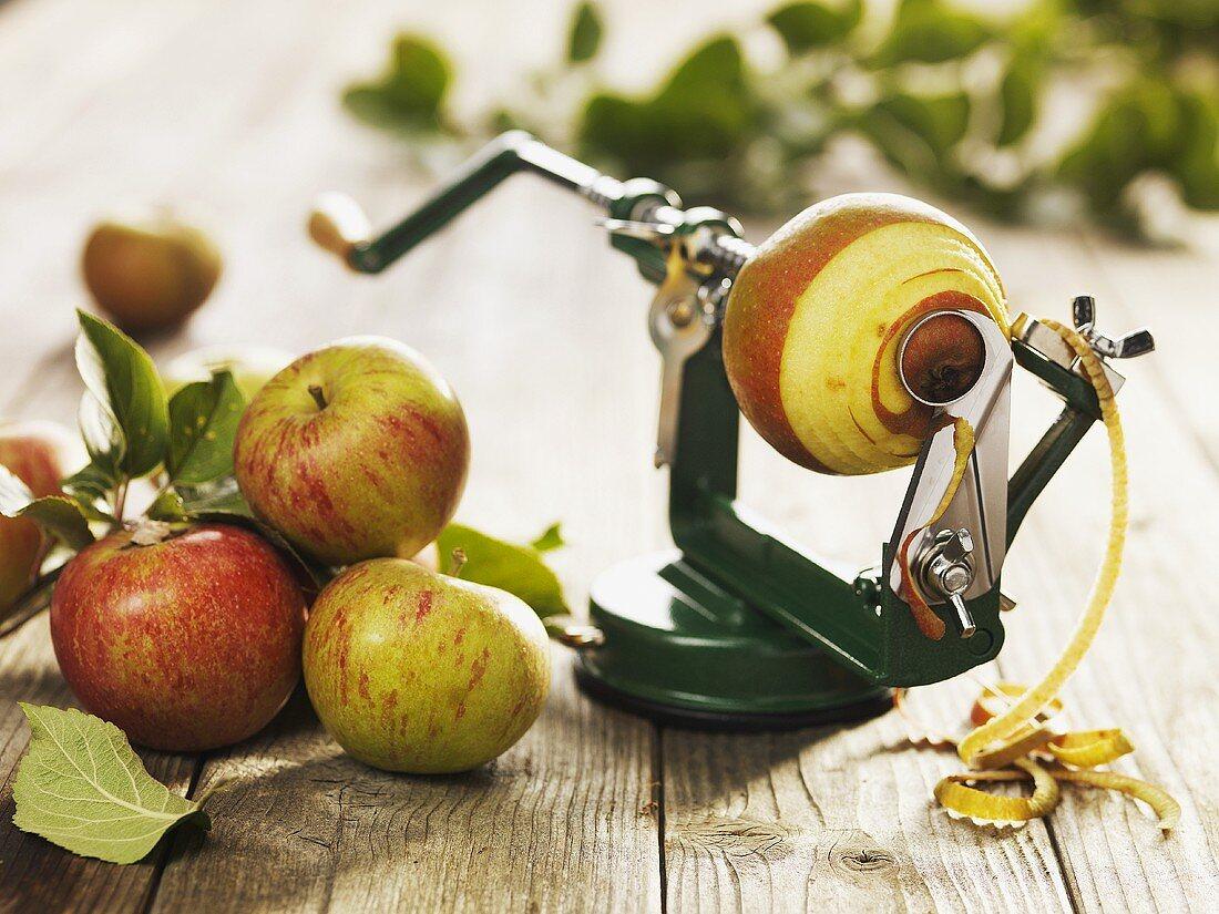 Apple peeler with apple