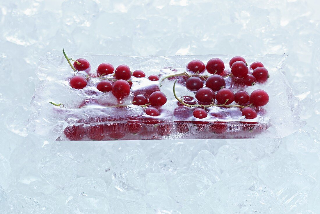 Redcurrants frozen in a block of ice