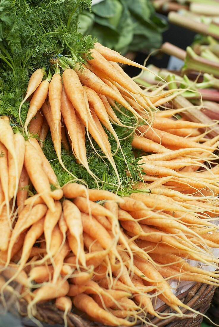 Bunches of carrots on a market stall