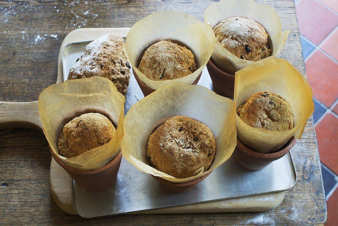Soda bread rolls baked in terracotta pots