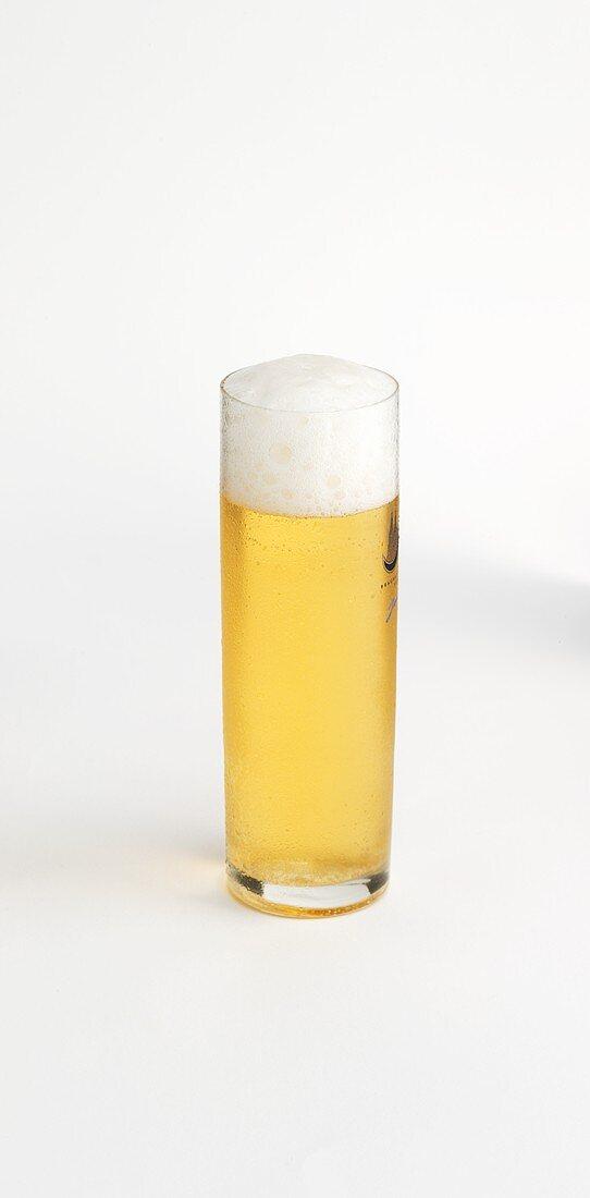 A glass of Kölsch beer
