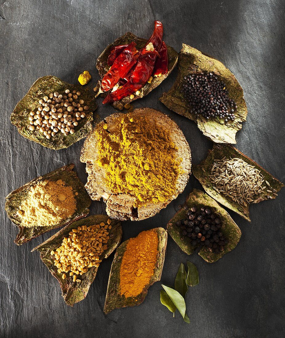 Curry powder and assorted spices on tree bark