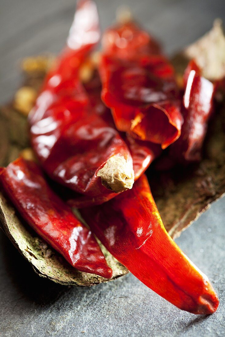 Dried chillies on tree bark