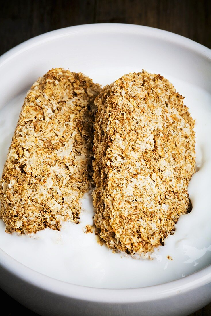 Whole grain wheat biscuits on yoghurt