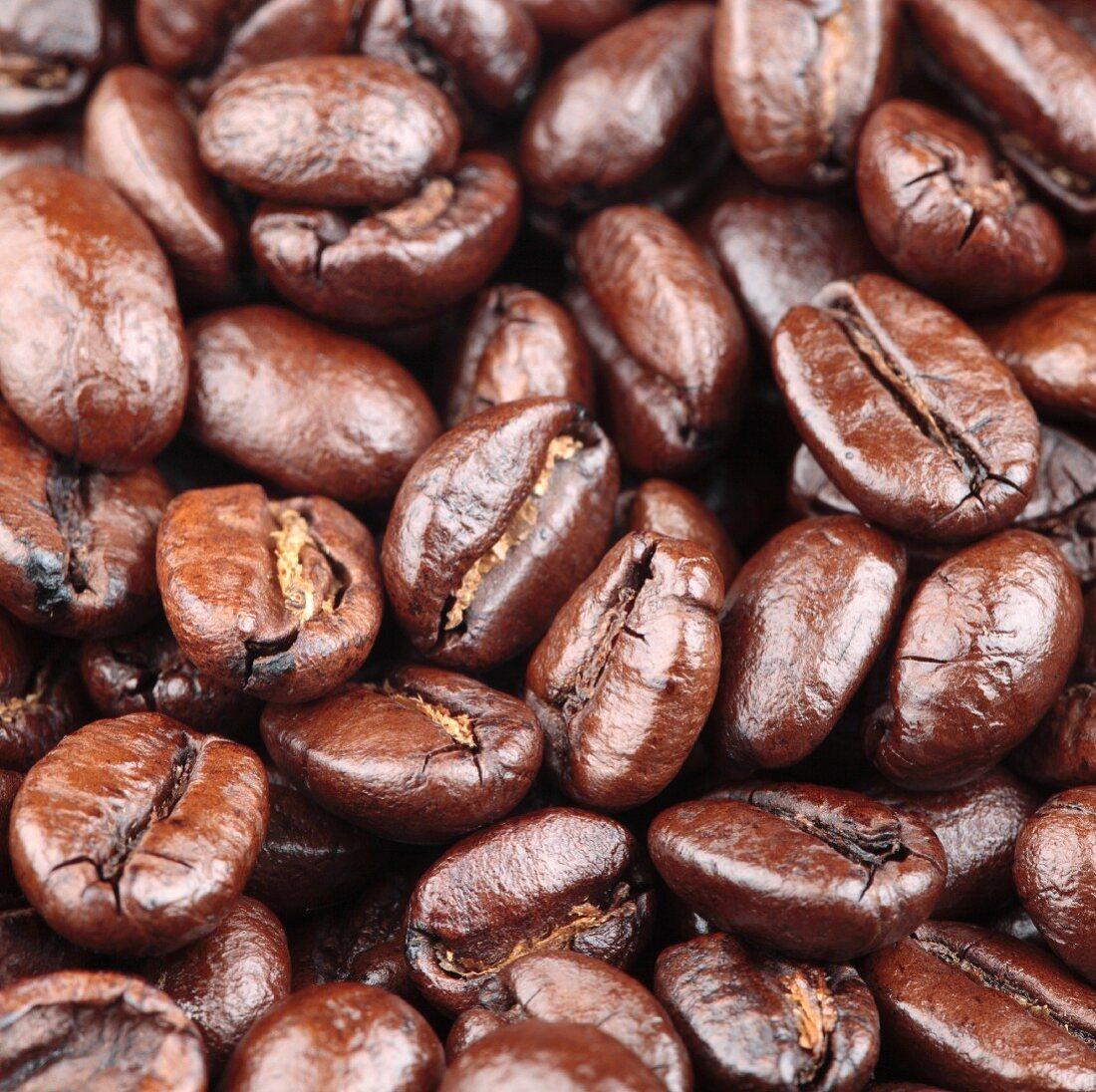Roasted coffee beans (macro zoom)