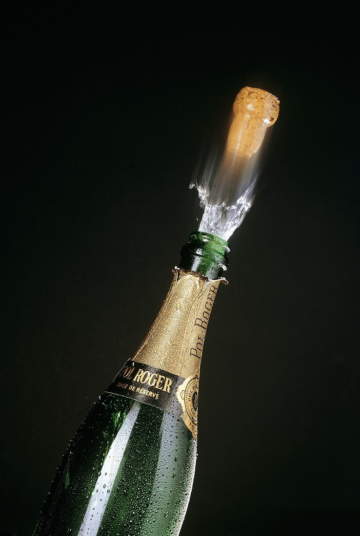 Cork Jumps from Champagne Bottle