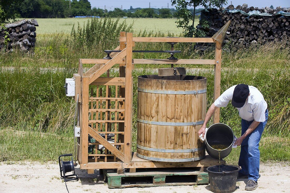 A preparation or a tea being mixed with water and dynamized. It will later be sprayed onto the vines. Domaine Rossignol-Trapet, dynamization, Burgundy, France