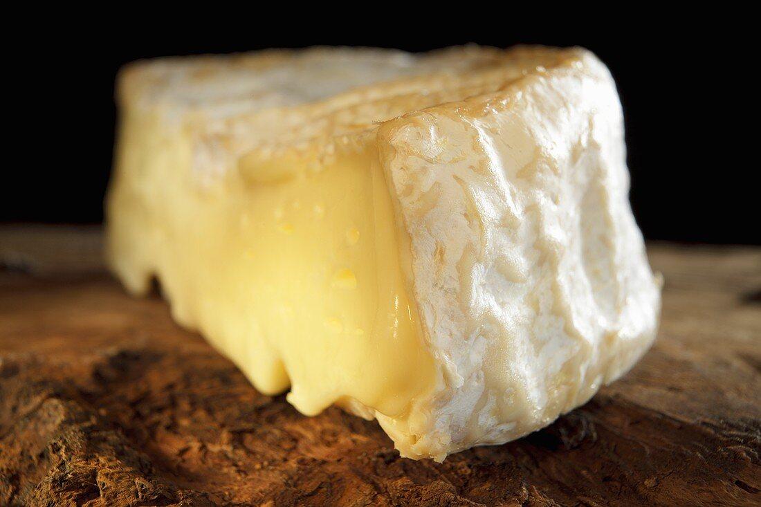 Camembert de Normandie (close-up)