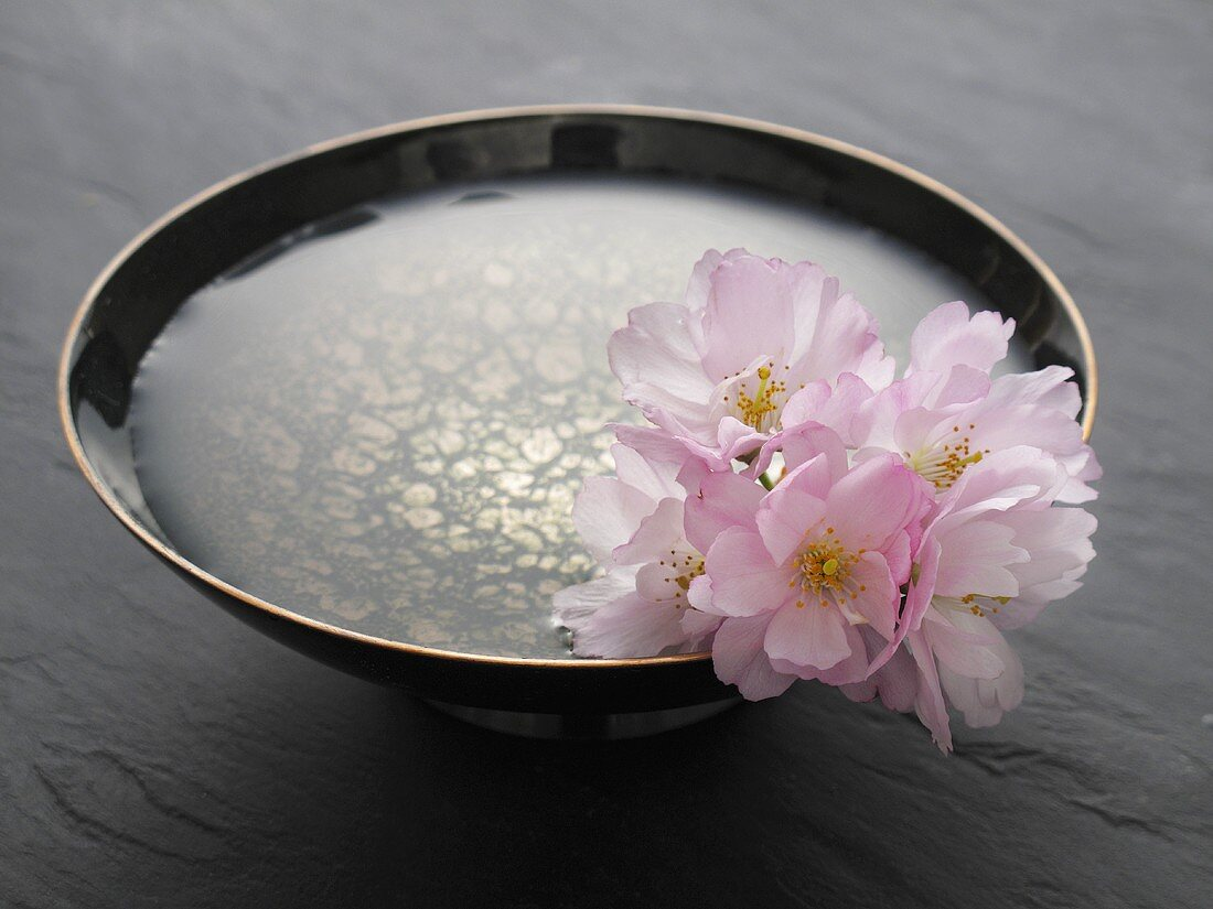 Almond flowers in a bowl