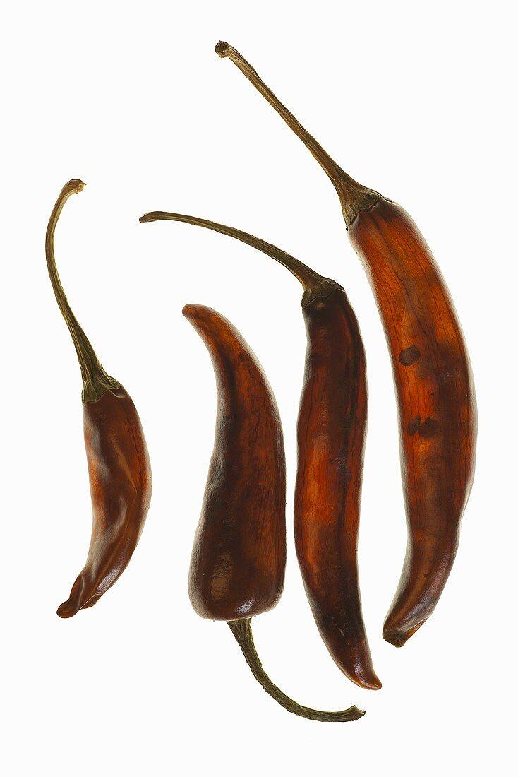 Vier Amarillo Chilischoten