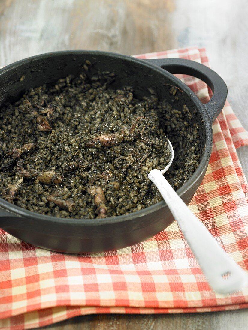 Arroz negro (Schwarzer Reis, Spanien) mit Tintenfisch