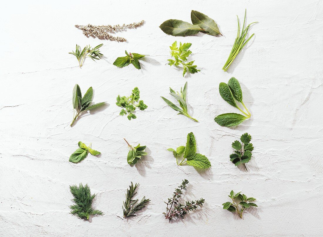 Culinary herbs from A-Z