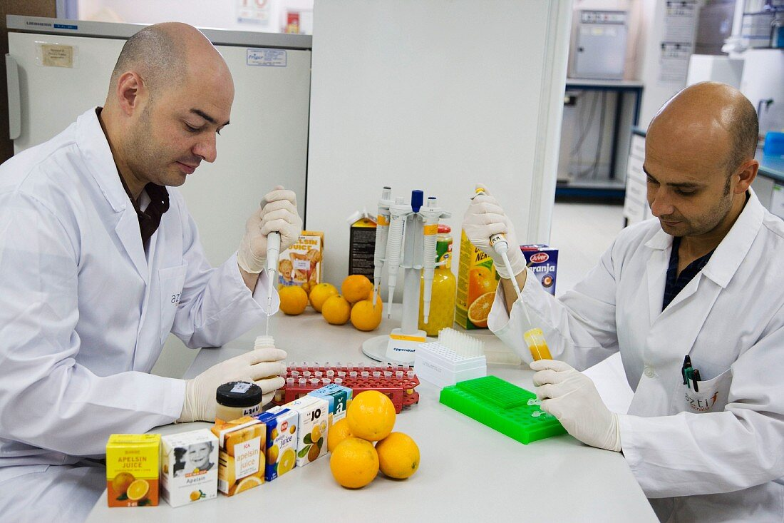 Preparing samples to detect the addition of tangerine to orange juice with DNA techniques, Euskadi, Spain