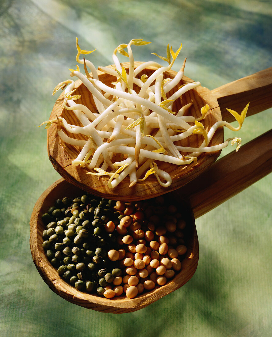 Pulses and bean sprouts