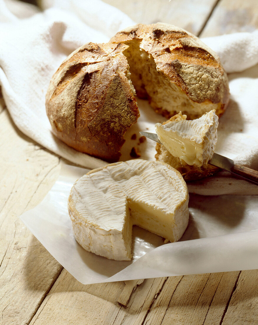 Camembert and bread