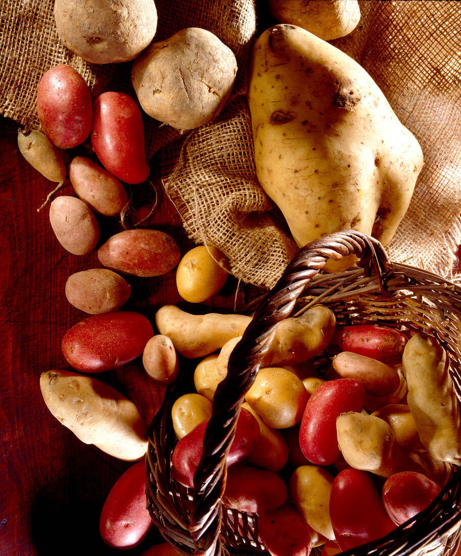 Selection of potatoes