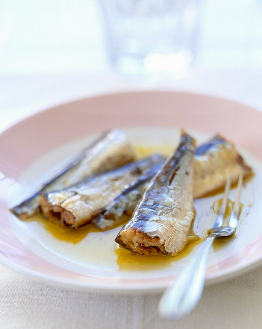 Plate of sardines in oil