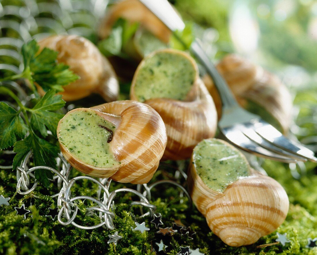Prepared burgundy snails
