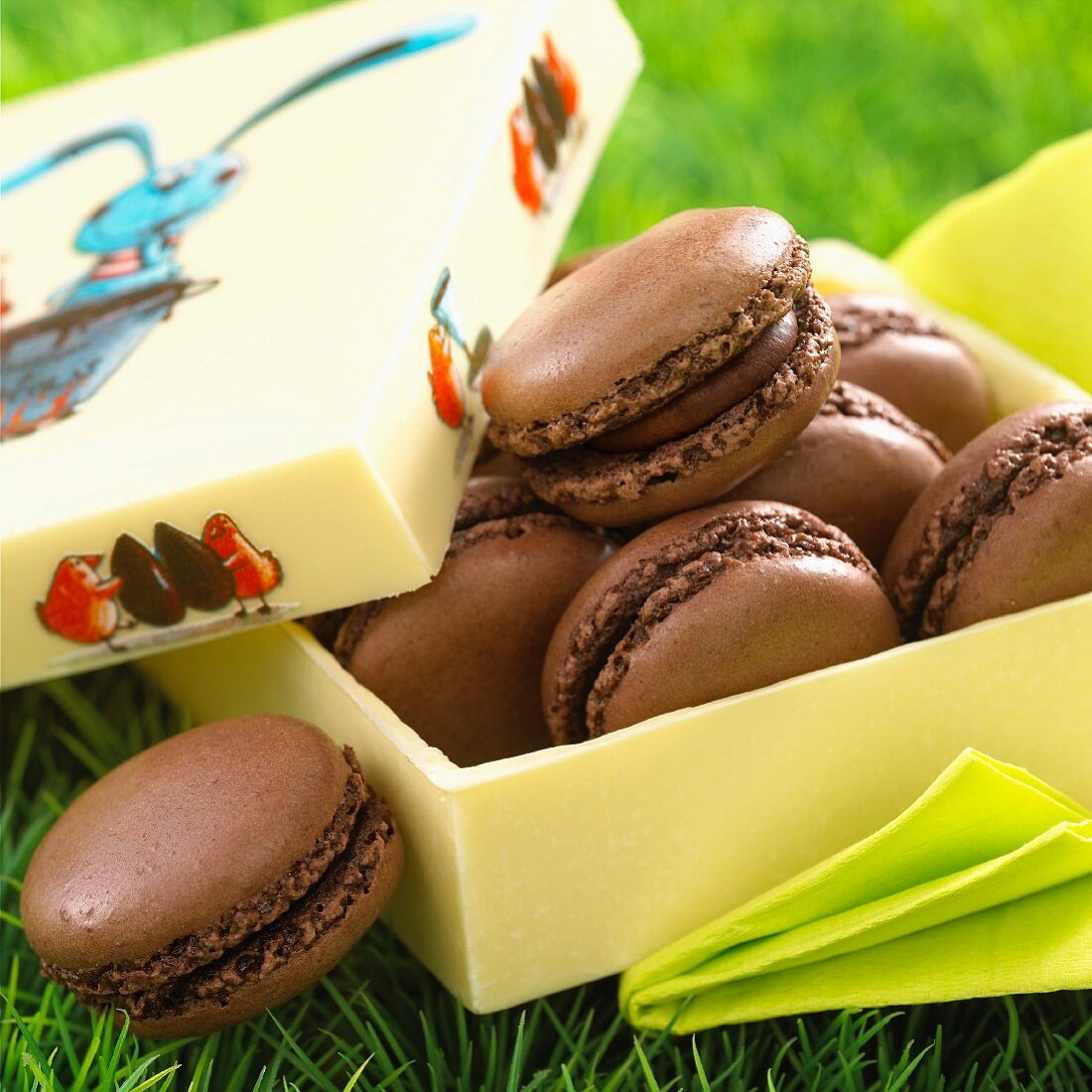 Chocolate macaroons in a box