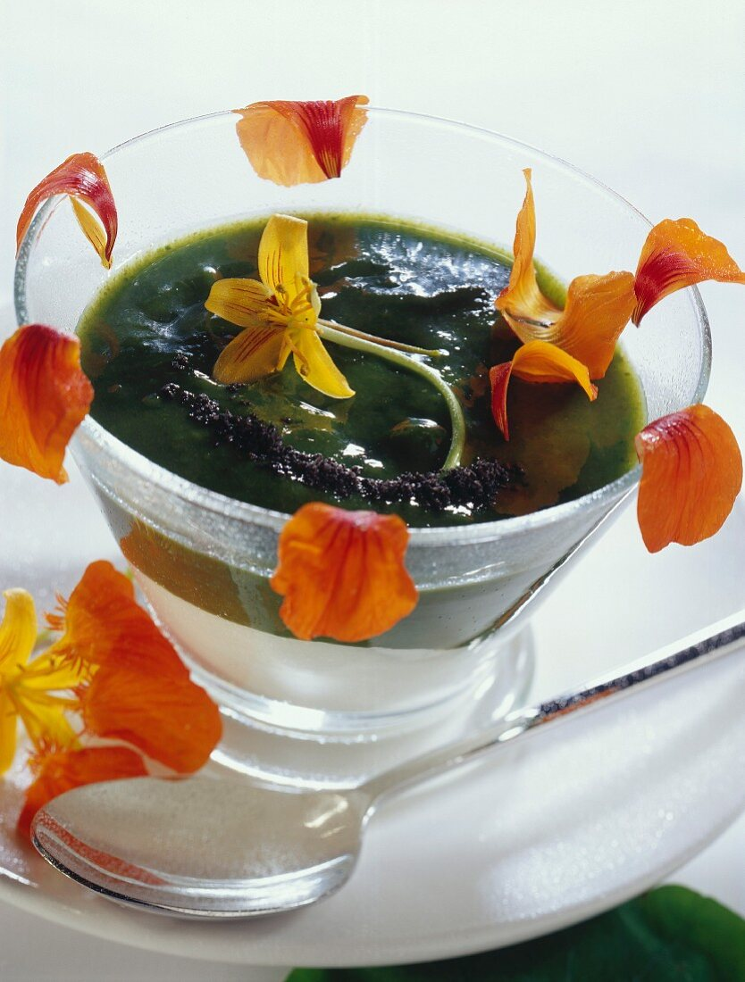 Cold dill and nasturtium soup