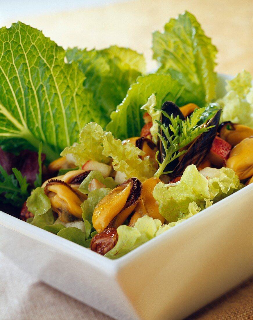 Musel and green celeriec salad