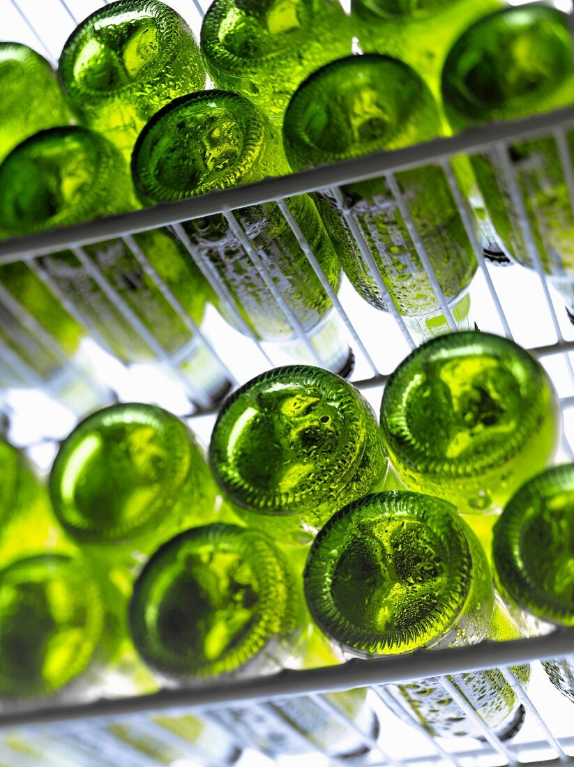 Layers of beer bottles in the refrigerator