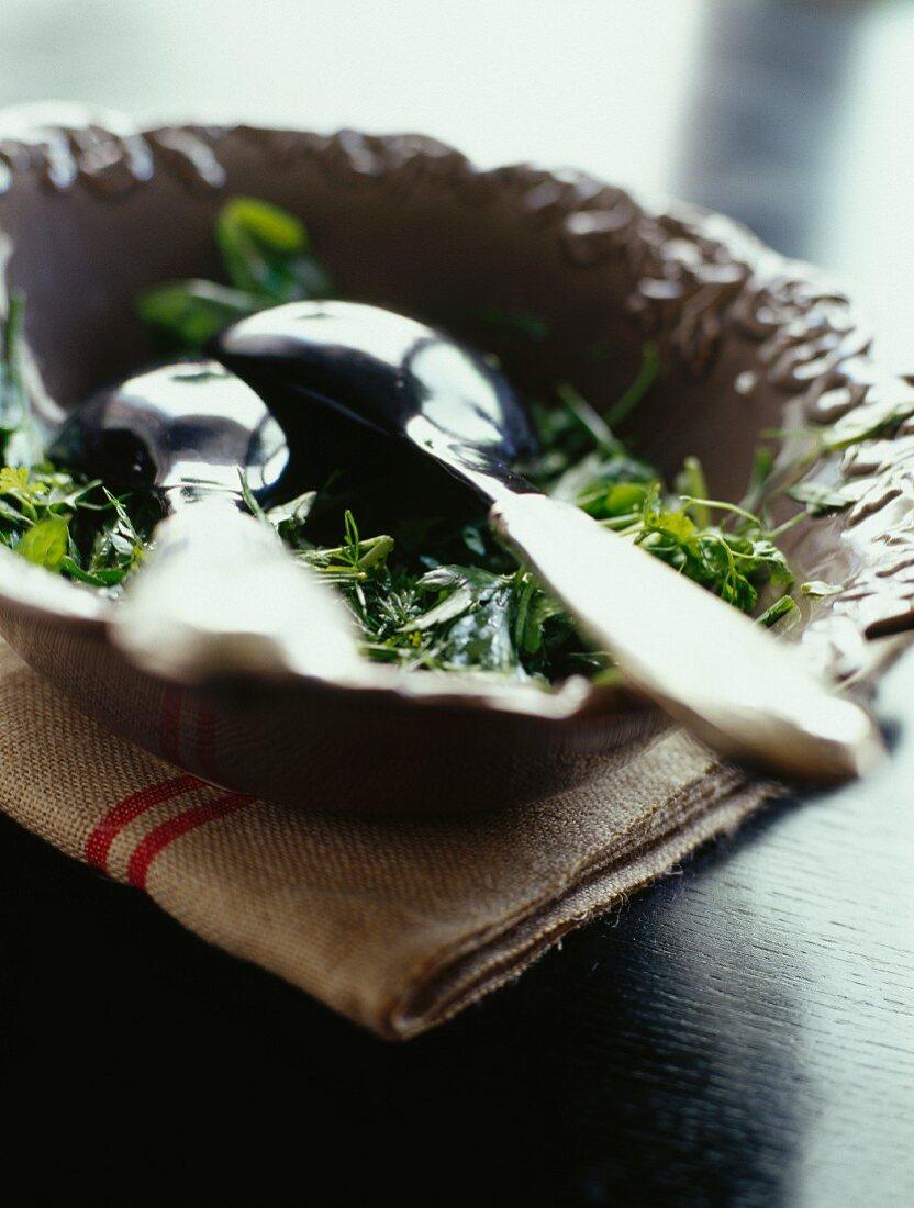 Garden herb salad